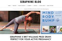 Seraphine blog